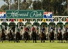 Gold Cup to Highlight Hollywood Meeting