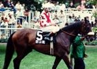 Champion De La Rose Euthanized