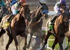 Kentucky Derby Trail:  Sometimes a Great Notional