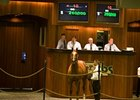 Mr. Greeley Colt Brings $260,000 at OBS