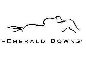Emerald Downs Gets 91-Day Meet