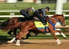 Kentucky Derby News Update: April 27, 2015