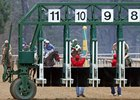 Purse Distributed in Oaklawn Non-Contest