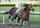 Limehouse Pointed Toward New Orleans Handicap