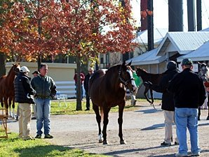 Pulpit Filly Tops Keeneland Day 7 at $190,000