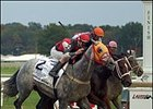Docent Shows Way in Maryland Million Classic