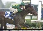 Mineshaft Meets Moon Ballad in Gold Cup