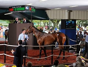 Street Cry Colt Brings $2.1 Million