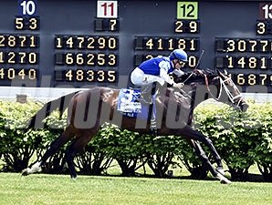 Tepin wins the 2015 Churchill Distaff Turf Mile.