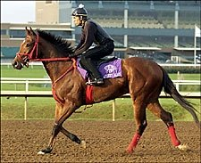Afleet Alex Due to Work; Southwest Field Takes Shape