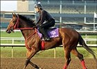 Afleet Alex Lives Up to Name in Monday Work