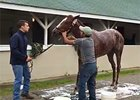 Kentucky Oaks: Favorite I'm a Chatterbox
