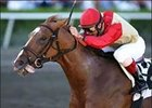 Corinthian Leaves Jazil Behind at Gulfstream