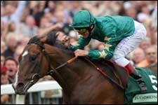 Authorized Impressive in Juddmonte International