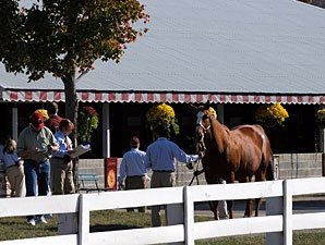 Keeneland Sale Faces Economic Hurdles