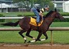 Street Sense Impressive in Final Derby Workout
