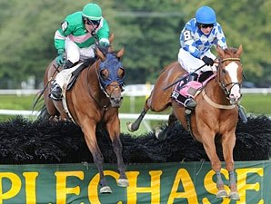 Dark Equation Takes Turf Writers 'Chase