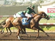 Borrego Springs Pacific Classic Surprise; Del Mar Wagering Record Set