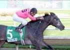 Cause to Believe Choice in Illinois Derby