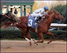 Kentucky Derby Trail: Lawyer Ron Makes His Case
