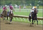 Grade I Winner Millennium Wind Retired