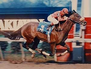 Derby Winner Lil E. Tee Euthanized