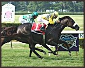 Owsley Posts Game New York Handicap Victory