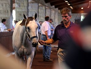 Unbridled's Song Colt Leads Way at Keeneland