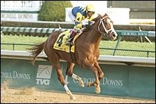 Pletcher-Trained Indian Vale Distaff Favorite