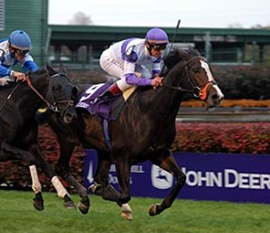 Major Hong Kong Races Shaping Up