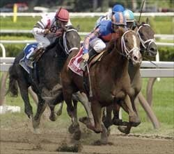 Juvenile Preview: Pletcher Youth