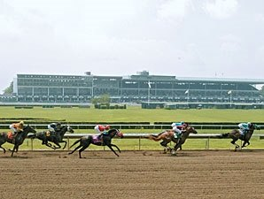 NJ Breeders Simply Hoping Monmouth Plan Works