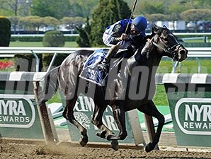 Loki's Vengeance wins the 2015 Affirmed Success Stakes.