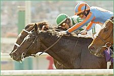BC Winner Johar Retired