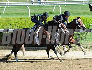 Materiality (outside) and Stanford at Belmont Park on May 22, 2015.
