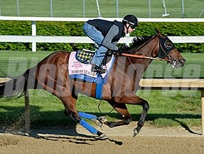 Maybellene Works at Churchill Downs 4.27.15.