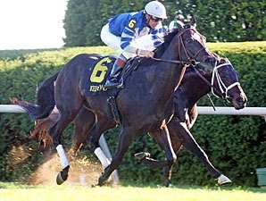 Seaspeak Looks Dangerous in Dallas Turf Cup