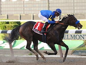 Indian Blessing Will Run in Dubai