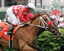 Sky Conqueror Overcomes Stumble to Win Turf Classic