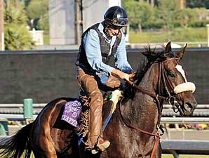 Willard, Zenyatta's Exercise Rider, Dies