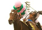 Tuscan Evening, Visit Clash in Royal Heroine