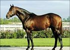 Malibu Moon, Action This Day to Spendthrift