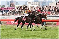 Japanese Stablemates Play Winning Tune in Melbourne Cup