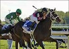 Maiden Bel Air Beauty Pulls Shocker in Alcibiades
