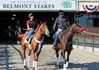 Labor Dispute Won't Stop Belmont Stakes