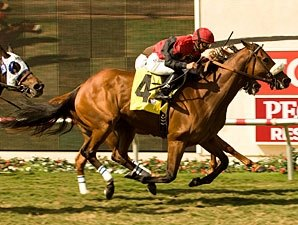 Gotta Have Her Wins Duel for Palomar Repeat