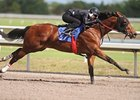 Woods' Juveniles Shine in F-T Under Tack Show