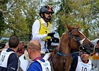 Sheikh Mohammed Finishes Second in Endurance