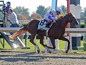 Square Eddie to Run in Lexington Stakes