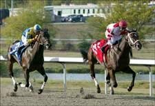 Hard Spun Trumps Street Sense in Kentucky Cup Classic